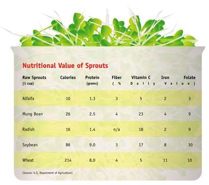 sprout comparison chart
