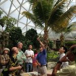 inside of Epcot geodesic dome